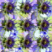 Passion Fruit Digital Art Posters - Flowers on the Wall Poster by Betsy A Cutler East Coast Barrier Islands