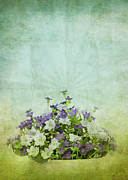 Cloud Art Prints - Flowers Pattern On Old Grunge Paper Print by Setsiri Silapasuwanchai