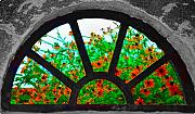 Thomas Jefferson Digital Art Metal Prints - Flowers Through Basement Window at Monticello Metal Print by Bill Cannon