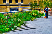 West Village Prints - Flowery Garden on the High Line Print by Randy Aveille