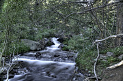 Colorado Stream Posters - Flowing Stream in Rocky Mountain National Park Poster by David Bearden