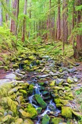 Olympic National Park Prints - Flowing Through The Woods II Print by Heidi Smith