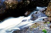 Adirondack Park Art - Flowing Water by Amanda Kiplinger