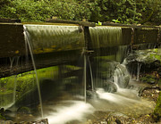 Park Scene Photo Prints - Flowing Water from Mill Print by Andrew Soundarajan