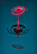 Reflections In Water Posters - Fluid Parasol Poster by Susan Candelario