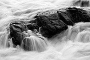 Sue Oconnor Metal Prints - Fluid Metal Print by Sue OConnor