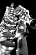 Woodwind Photos - Flute Series II by Lauren Radke