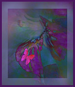 Fluttering Posters - Flutter Of The Butterfly Poster by Debra     Vatalaro