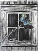 Charcoal Pastels Framed Prints - Fly Away Free Framed Print by Carla Carson