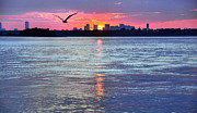 Hull Ma Prints - Fly By Night Print by Joanne Brown