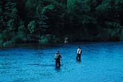 Two Fishing Men Posters - Fly Fishermen In A River Poster by Nick Norman