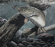 Fish Underwater Pastels - Fly Fishing by Jim Figora