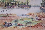 Canadian Geese Paintings - Fly through at Negro bar by W R  Hersom
