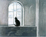 Black And White Cat Framed Prints - Fly Watching Framed Print by Robert Foster