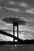 Mark Gilman - Flying By The Verrazano Bridge