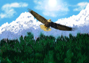 Nature Pencil Art Art - Flying High by Garry Staranchuk