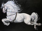Dressage Drawings - Flying Lipizan by Bj Redmond