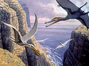 Swooping Framed Prints - Flying Pterosaurs Framed Print by Mauricio Anton