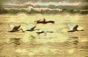 Swans... Paintings - Flying swans by Odon Czintos
