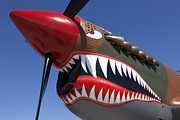 Planes Photos - Flying tiger plane by Garry Gay