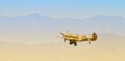 Pastel Photo Originals - Flying Tigers To Angels Ten by Gus McCrea