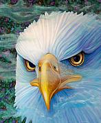 Birds Of Prey Paintings - Focus by Brian  Commerford