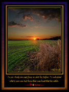 Inspirational Poster Framed Prints - Focus Framed Print by Phil Koch