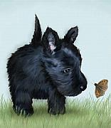 Scottish Terrier Digital Art - Focused - Scottish Terrier by Sue Rundle-Hughes