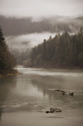 Umpqua River Framed Prints - Fog along the Umpqua river Framed Print by Timothy Johnson