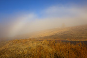 Yakima Valley Photo Framed Prints - Fog Bow at Lookout Point Framed Print by Mike  Dawson