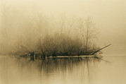 Fog Mist Prints - Fog Hovers Above The James River Print by Raymond Gehman