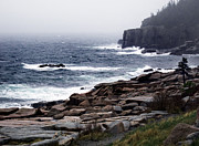 Maine Shore Prints - Fog In Acadia Print by Skip Willits