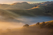 Moody Sky Posters - Fog In Valley At Sunrise Poster by Marc Crumpler