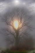 Lightning Strike Photos - Fog N Light by Emily Stauring