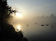 Arkansas Pyrography Metal Prints - Fog on the White River Metal Print by Heather Owen