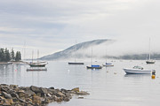 Southwest Harbor Prints - Fog Southwest Harbor Mount Desert Maine Print by Keith Webber Jr
