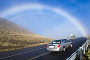 Mountain Road Prints - Fogbow, Hawaii Print by David Nunuk
