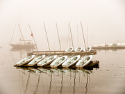 Dingy Prints - Fogged In Again Print by Bob Orsillo
