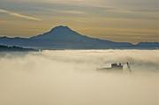 Tacoma - Foggy Basin by Sean Griffin
