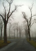 Creepy Digital Art - Foggy Cemetery Road by Gothicolors With Crows