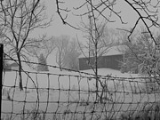 Freeport Prints - Foggy Day at the Barn Print by David Bearden