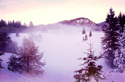 Snow Picture Prints - Foggy Day Print by Gualtiero Boffi