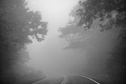 Virginia Photos - Foggy Drive by Heather Applegate