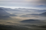 Blue Photographs Posters - Foggy Morn on the Parkway Poster by Rob Travis