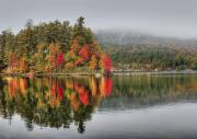 Autumn Foliage Photos - Foggy Morning by Evelina Kremsdorf