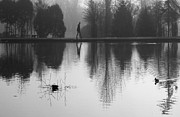 Karin Ubeleis-Jones - Foggy Morning Reflection