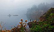 Foggy Morning Print by Robert Bales