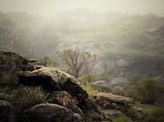 Mountain Scene Prints - Foggy Print by Pablo Chamorro Photography