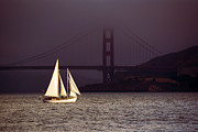 Golden Gate Bridge Acrylic Prints - Foggy Sailing Acrylic Print by Anthony Citro