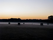 South Arkansas Prints - Foggy Sneed Field Sunrise Print by Brooklyn Baker